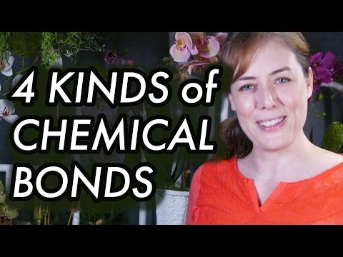 Ionic and Covalent Bonds Hydrogen Bonds van der Waals - 4 types of Chemical Bonds in Biology