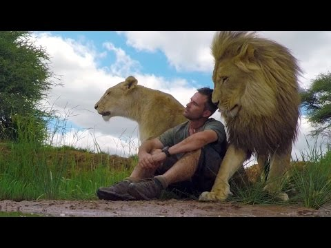An Unbreakable Bond The Lion Whisperer