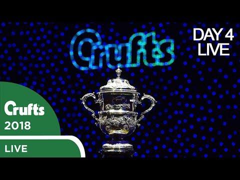 Day 4 Live Stream Crufts 2018