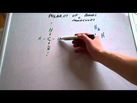 Polarity of Bonds and Molecules