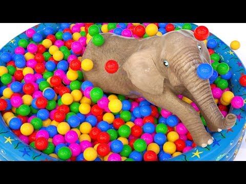Learn Colors With Animals Ball Pit Show for Children h - Colours With Elephant and Cow for Kids