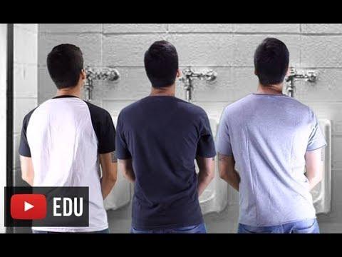 Sistema endócrino paródia Anitta - Paradinha - Professor Gustavo