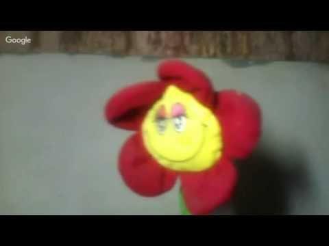a flor dançarina