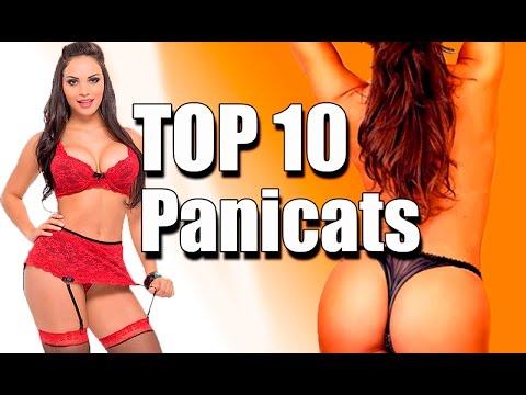 TOP 10 Panicats
